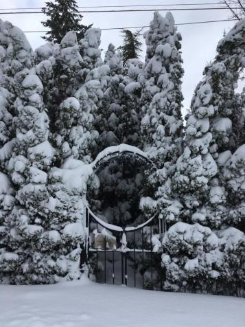 snow-gate